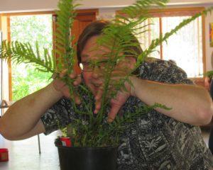 Brian peeking through the fern